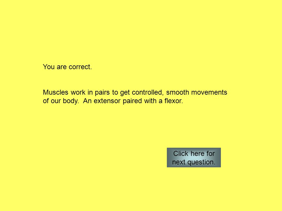 You are correct. Muscles work in pairs to get controlled, smooth movements of our body.