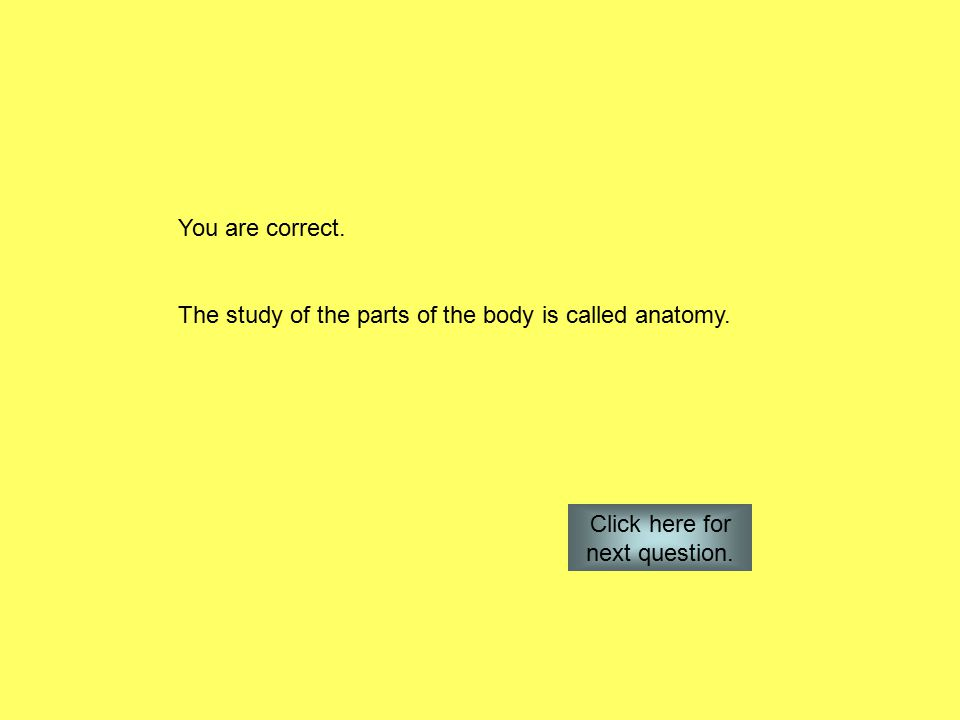 You are correct. The study of the parts of the body is called anatomy.