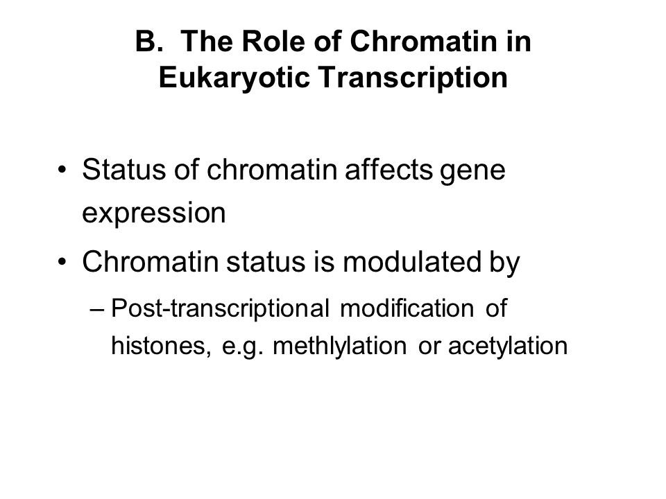 B. The Role of Chromatin in Eukaryotic Transcription Status of chromatin affects gene expression Chromatin status is modulated by –Post-transcriptiona