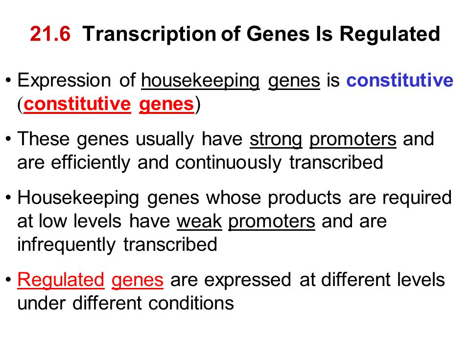 21.6 Transcription of Genes Is Regulated Expression of housekeeping genes is constitutive ( constitutive genes) These genes usually have strong promot