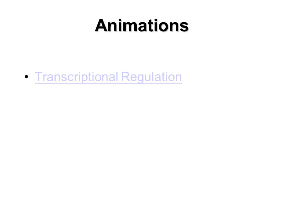 Animations Transcriptional Regulation