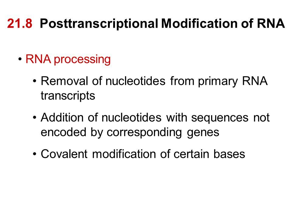 21.8 Posttranscriptional Modification of RNA RNA processing Removal of nucleotides from primary RNA transcripts Addition of nucleotides with sequences