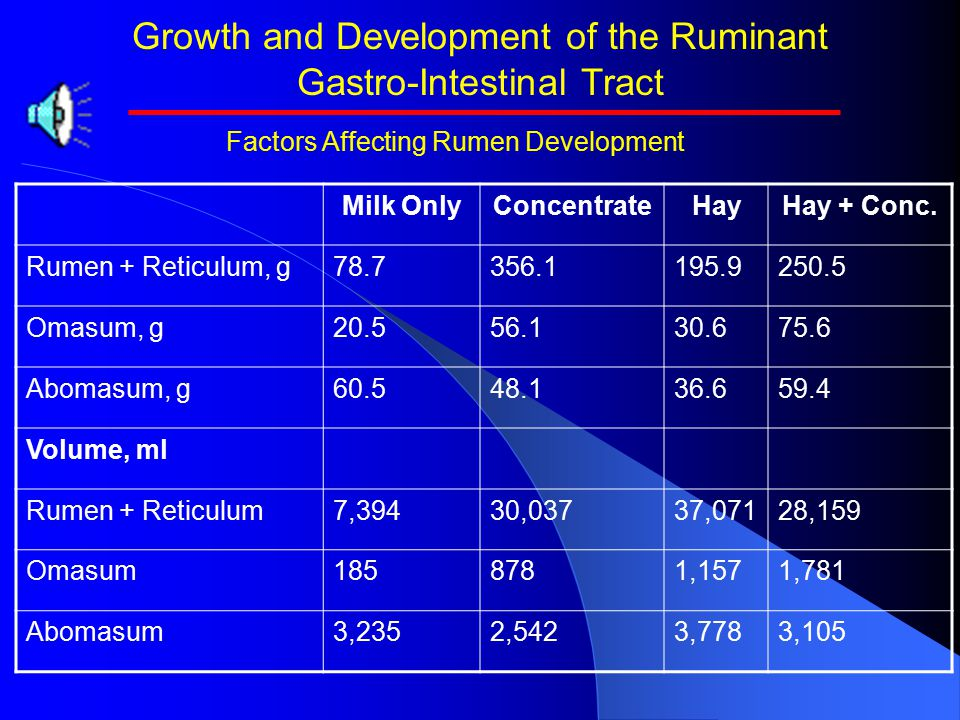 Growth and Development of the Ruminant Gastro-Intestinal Tract   Hay, forage, fiber stimulates reticulorumen development and growth through increase