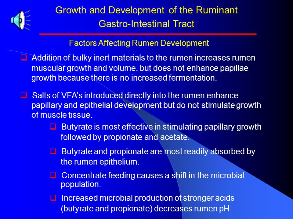 Growth and Development of the Ruminant Gastro-Intestinal Tract Factors Affecting Rumen Development Milk OnlyConcentrateHayHay + Conc. Rumen + Reticulu