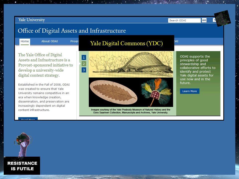 Yale Digital Commons (YDC)