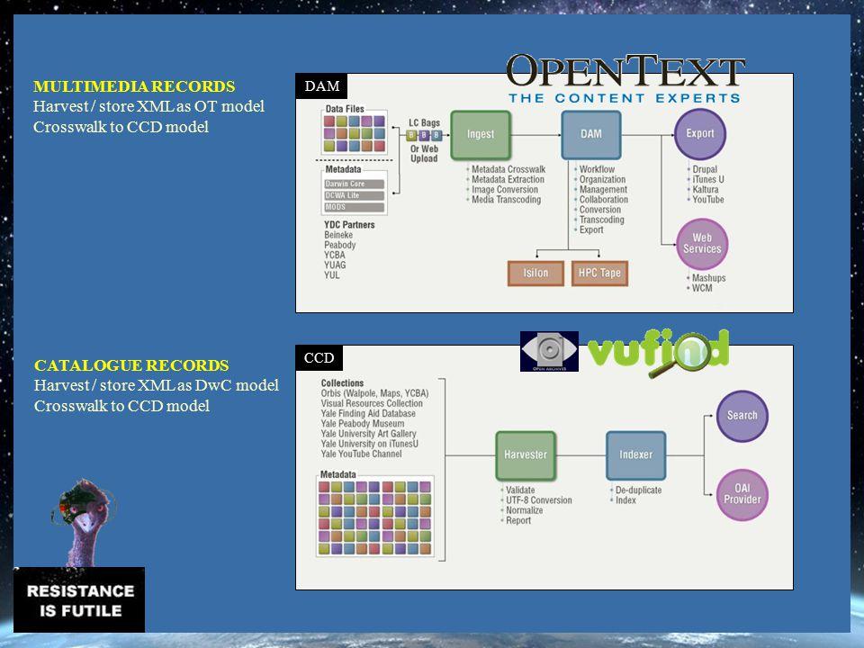 DAM CCD MULTIMEDIA RECORDS Harvest / store XML as OT model Crosswalk to CCD model CATALOGUE RECORDS Harvest / store XML as DwC model Crosswalk to CCD model