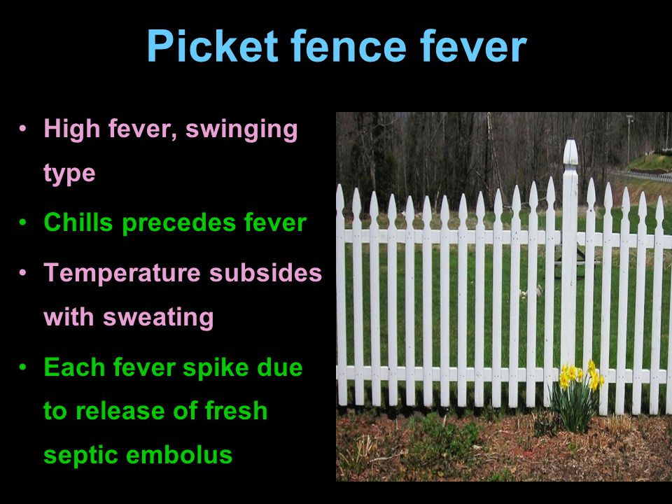 Picket fence fever High fever, swinging type Chills precedes fever Temperature subsides with sweating Each fever spike due to release of fresh septic