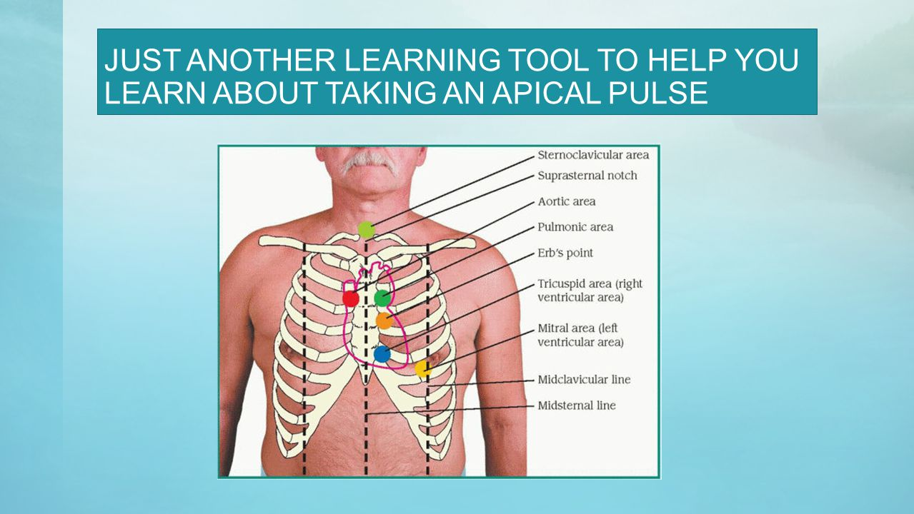 JUST ANOTHER LEARNING TOOL TO HELP YOU LEARN ABOUT TAKING AN APICAL PULSE