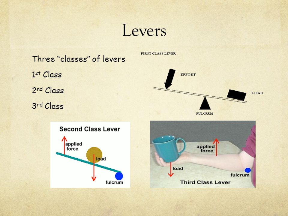 Levers Three classes of levers 1 st Class 2 nd Class 3 rd Class