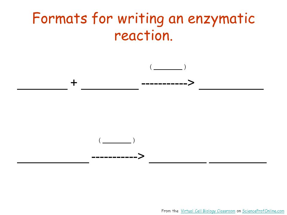 Formats for writing an enzymatic reaction.