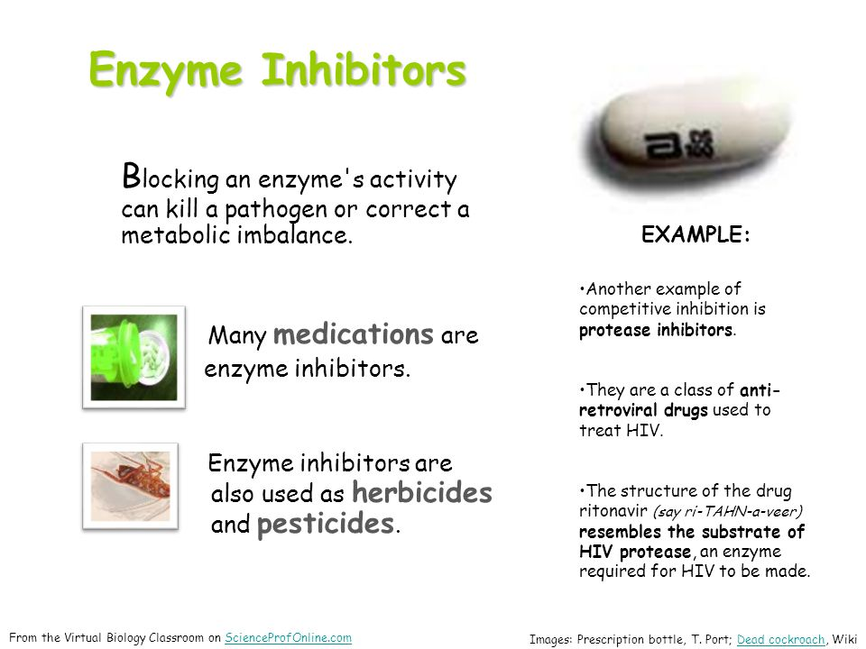 Enzyme Inhibitors B locking an enzyme s activity can kill a pathogen or correct a metabolic imbalance.