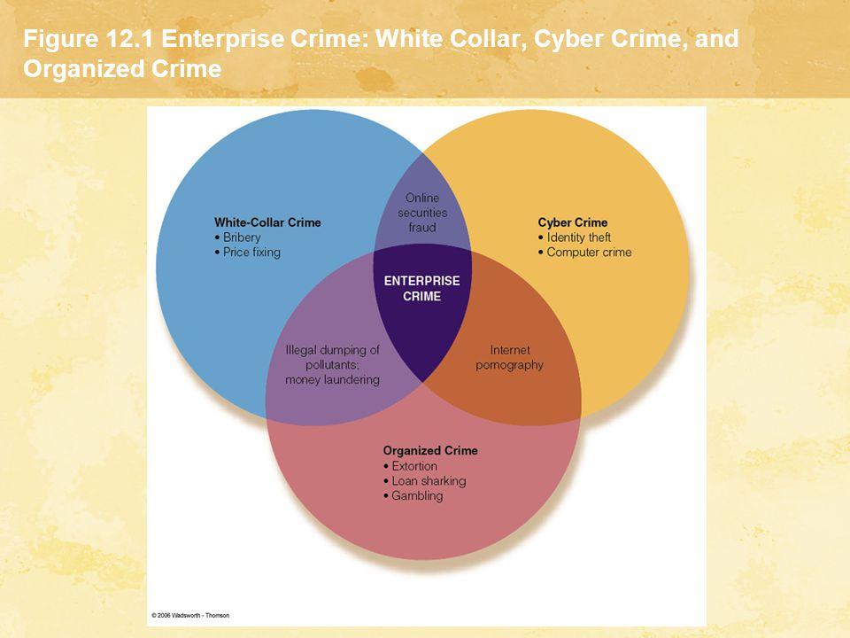 Figure 12.1 Enterprise Crime: White Collar, Cyber Crime, and Organized Crime