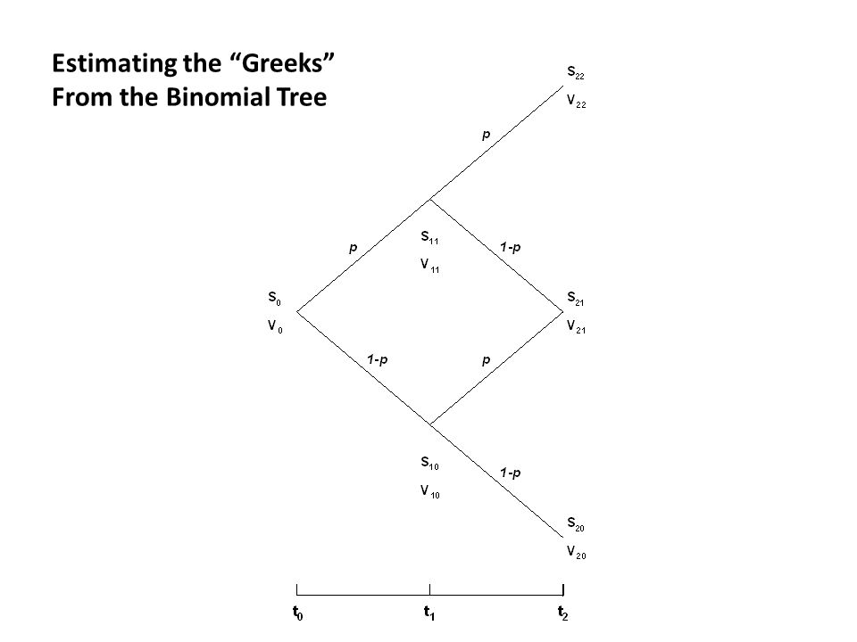 Estimating the Greeks From the Binomial Tree