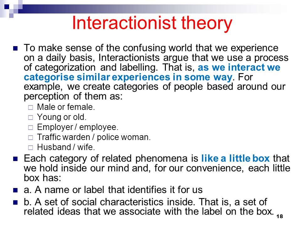 18 Interactionist theory To make sense of the confusing world that we experience on a daily basis, Interactionists argue that we use a process of cate