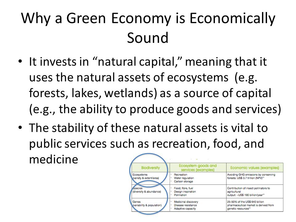 Why a Green Economy is Economically Sound It invests in natural capital, meaning that it uses the natural assets of ecosystems (e.g.