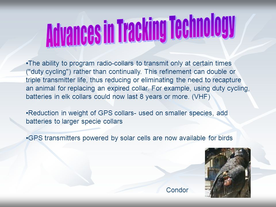 The ability to program radio-collars to transmit only at certain times ( duty cycling ) rather than continually.