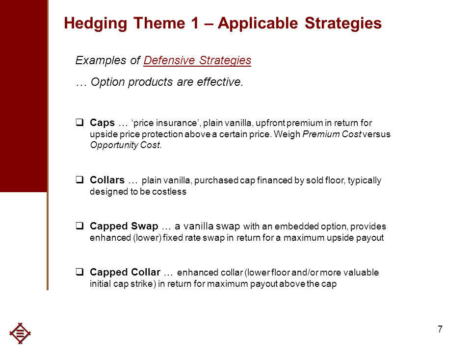 7 Hedging Theme 1 – Applicable Strategies Examples of Defensive Strategies … Option products are effective.