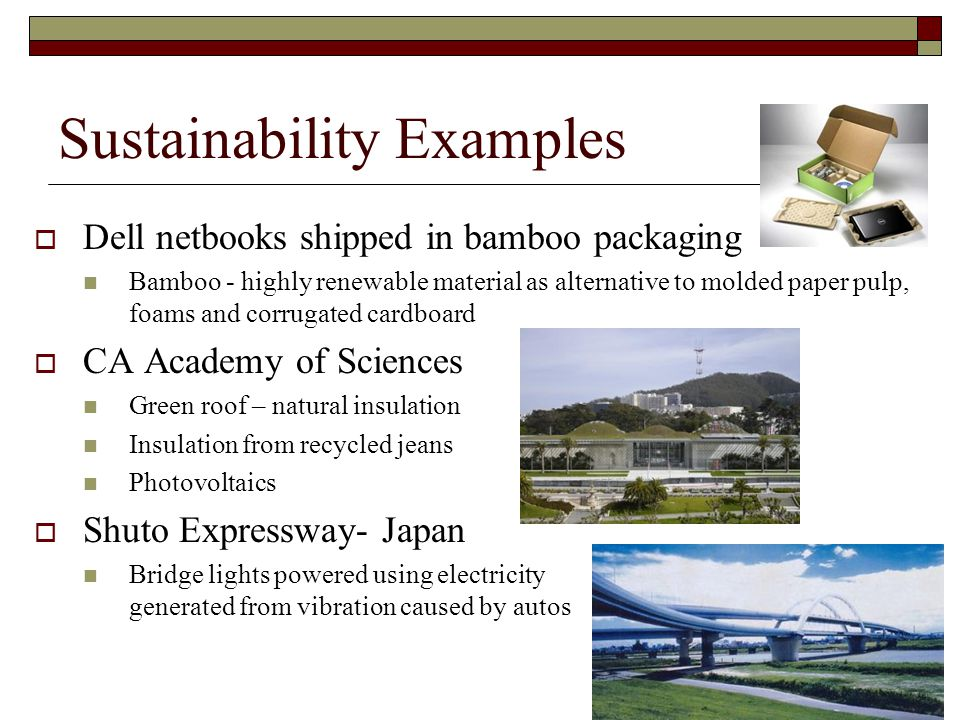 Sustainability Examples  Dell netbooks shipped in bamboo packaging Bamboo - highly renewable material as alternative to molded paper pulp, foams and