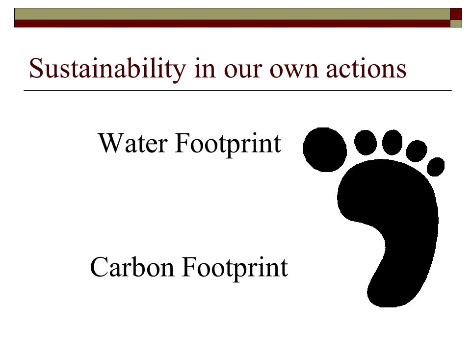 Sustainability in our own actions Water Footprint Carbon Footprint