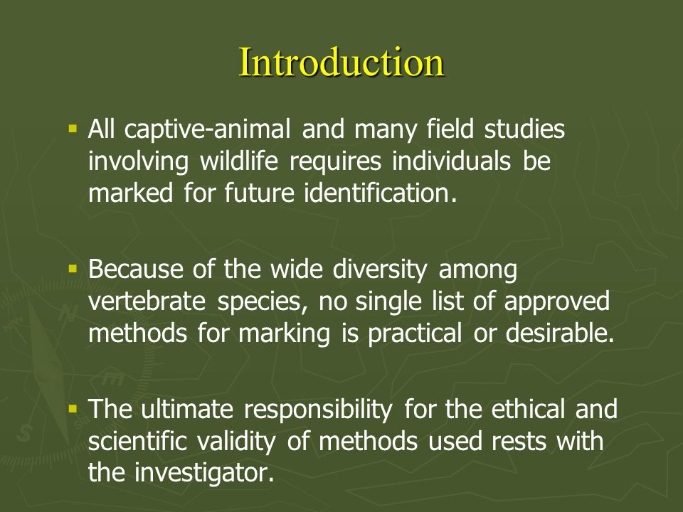 Considerations Prior to Marking ► ► Do the animals need to be marked or can natural markings be used instead.