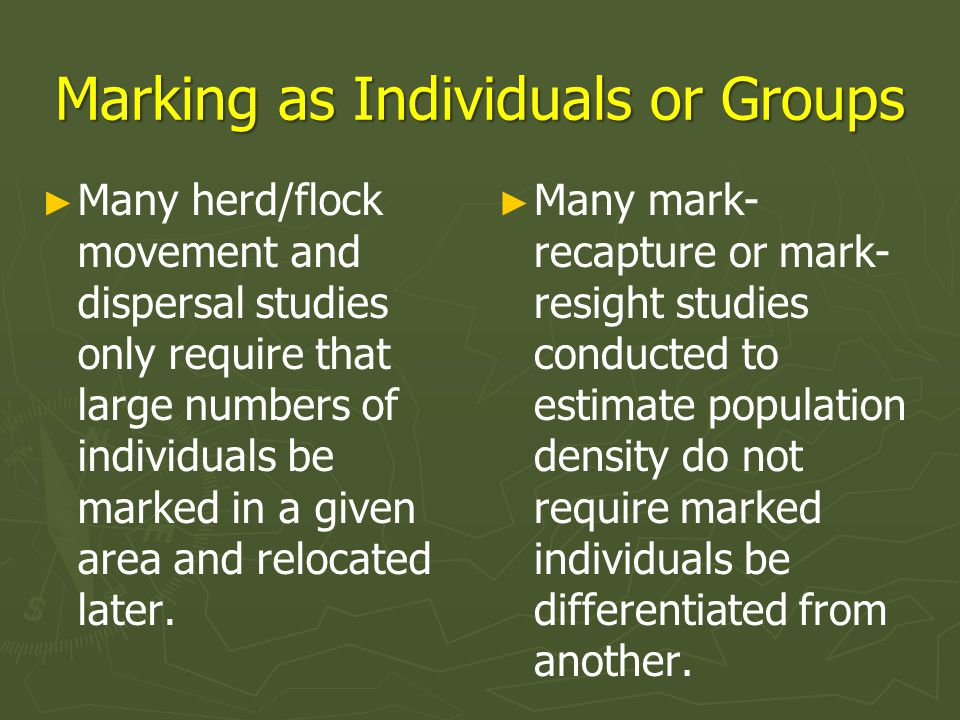 Marking Without Capture ► ► Remote marking of animals as individuals or groups has a long history.