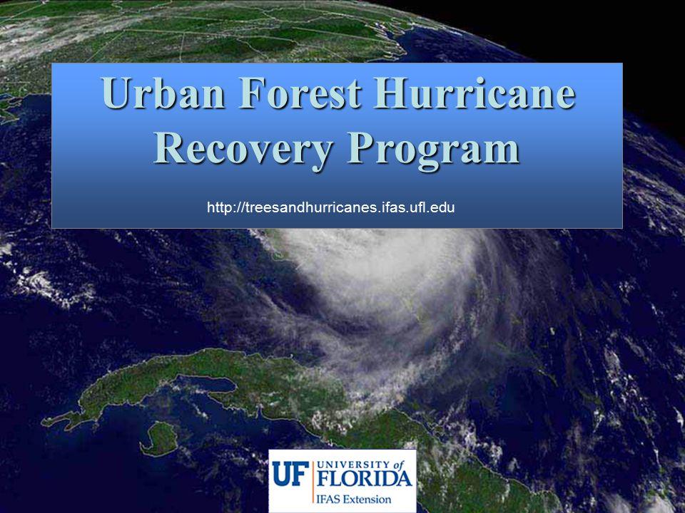 Urban Forest Hurricane Recovery Program http://treesandhurricanes.ifas.ufl.edu
