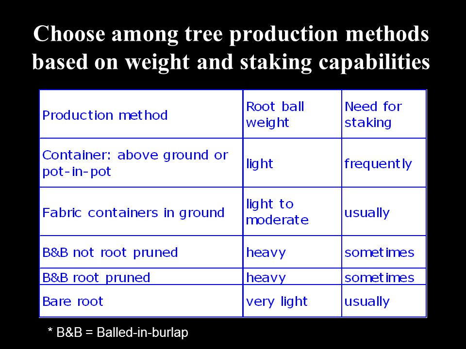 Choose among tree production methods based on weight and staking capabilities * B&B = Balled-in-burlap
