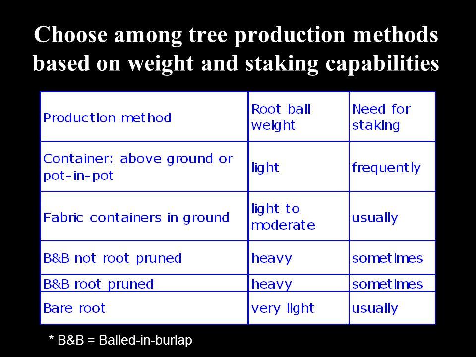 Tree size impacts tree establishment rate