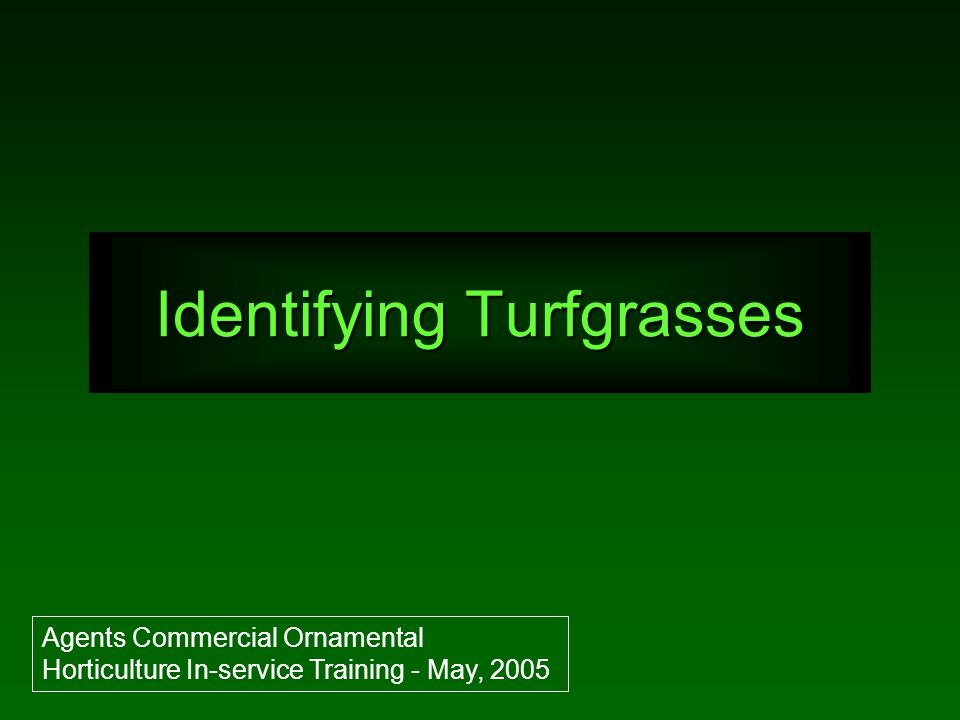 Identifying Turfgrasses Agents Commercial Ornamental Horticulture In-service Training - May, 2005
