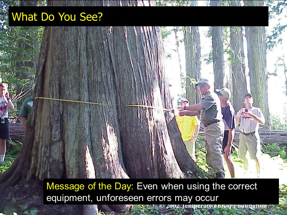 Extra Credit Question (due Monday) Describe different sources of error when measuring dbh with a diameter tape, a caliper, or a Biltmore stick?