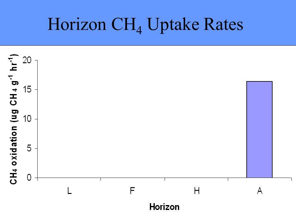 Horizon CH 4 Uptake Rates