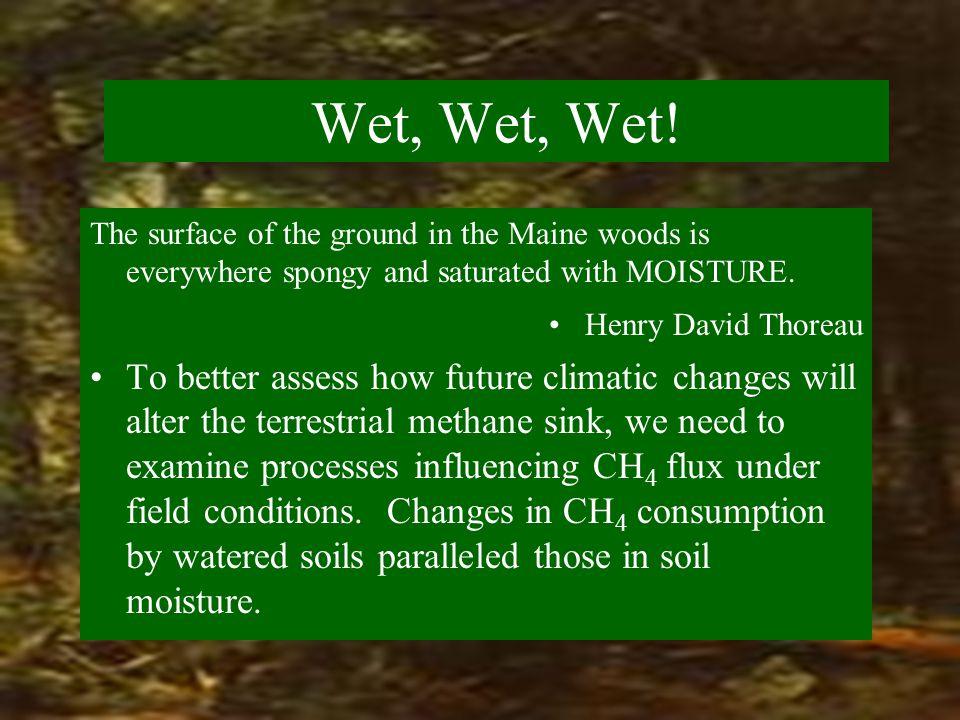 Wet, Wet, Wet.
