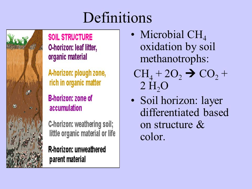 Definitions Microbial CH 4 oxidation by soil methanotrophs: CH 4 + 2O 2  CO 2 + 2 H 2 O Soil horizon: layer differentiated based on structure & color.