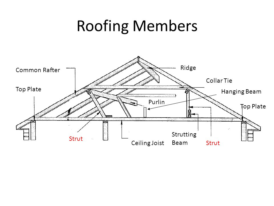 Roofing Members Common Rafter Ridge Collar Tie Purlin Strut Ceiling Joist Top Plate Strutting Beam Hanging Beam