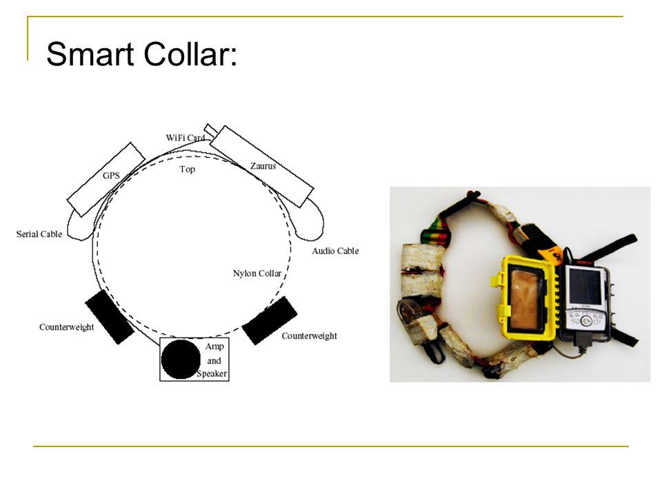 Smart Collar: