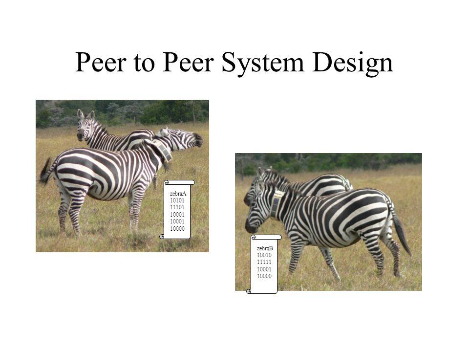 Peer to Peer System Design zebraA 10101 11101 10001 10000 zebraB 10010 11111 10001 10000