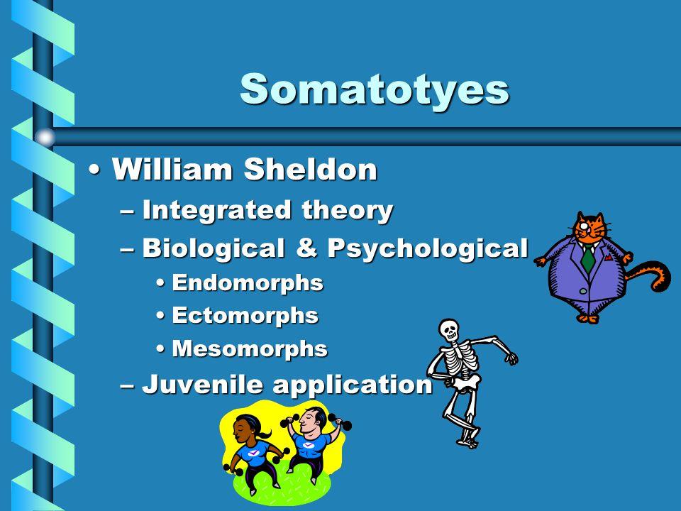 Somatotyes William SheldonWilliam Sheldon –Integrated theory –Biological & Psychological EndomorphsEndomorphs EctomorphsEctomorphs MesomorphsMesomorph