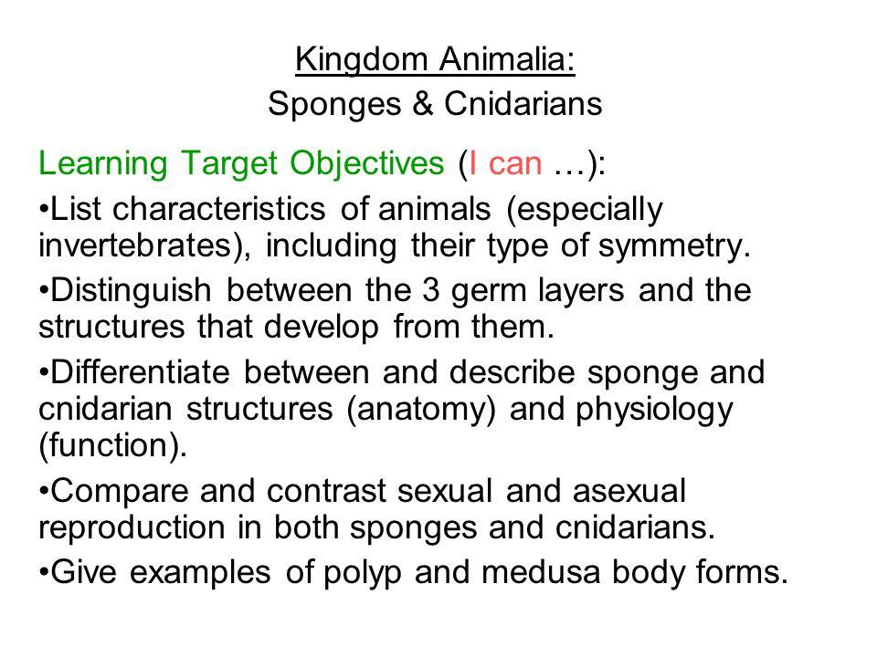 Vocabulary: Invertebrates * symmetry (spherical, bilateral, radial) * anterior * posterior * dorsal * ventral * cephalization * germ layers (ectoderm, mesoderm, endoderm) * sponges * pores * sessile * osculum * spicules * collar cells * filter feeding * amebocytes * spongin * budding * gemmules * regeneration * larva * hermaphrodites * cnidocytes * coelenterates * radial symmetry * scyphozoa * anthozoa * hydrozoa * nematocysts * planula * cilia * basal disks * meiosis