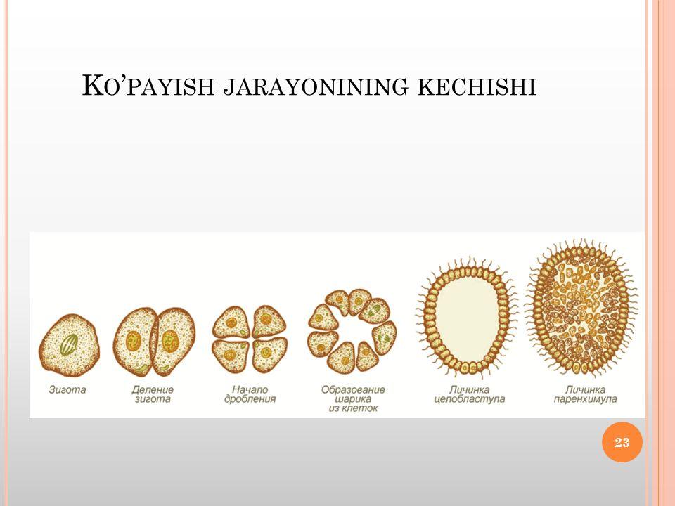 K O ' PAYISH JARAYONINING KECHISHI 23