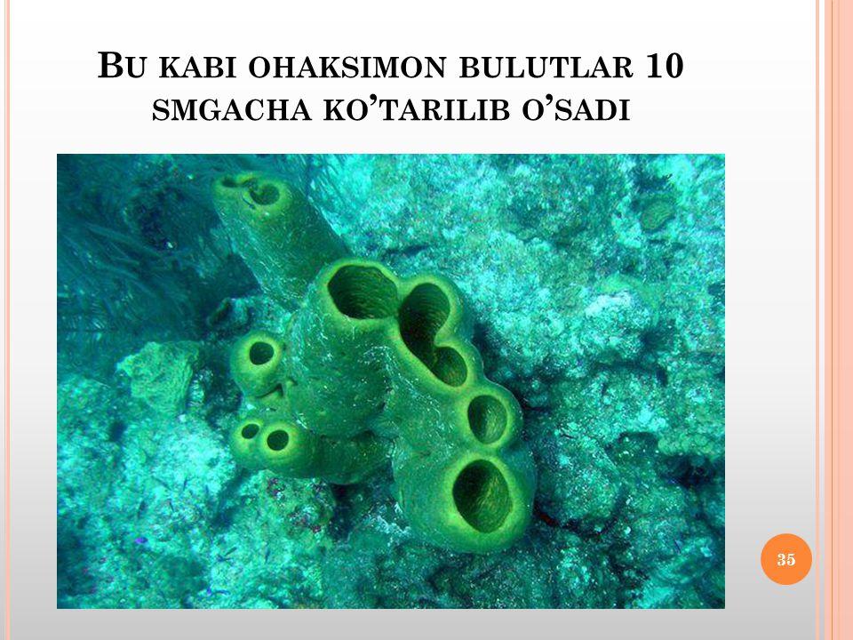 B U KABI OHAKSIMON BULUTLAR 10 SMGACHA KO ' TARILIB O ' SADI 35