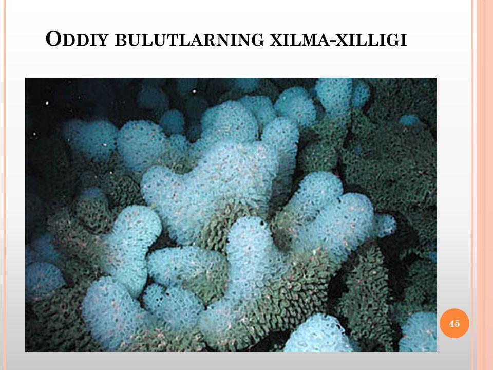 O DDIY BULUTLARNING XILMA - XILLIGI 45