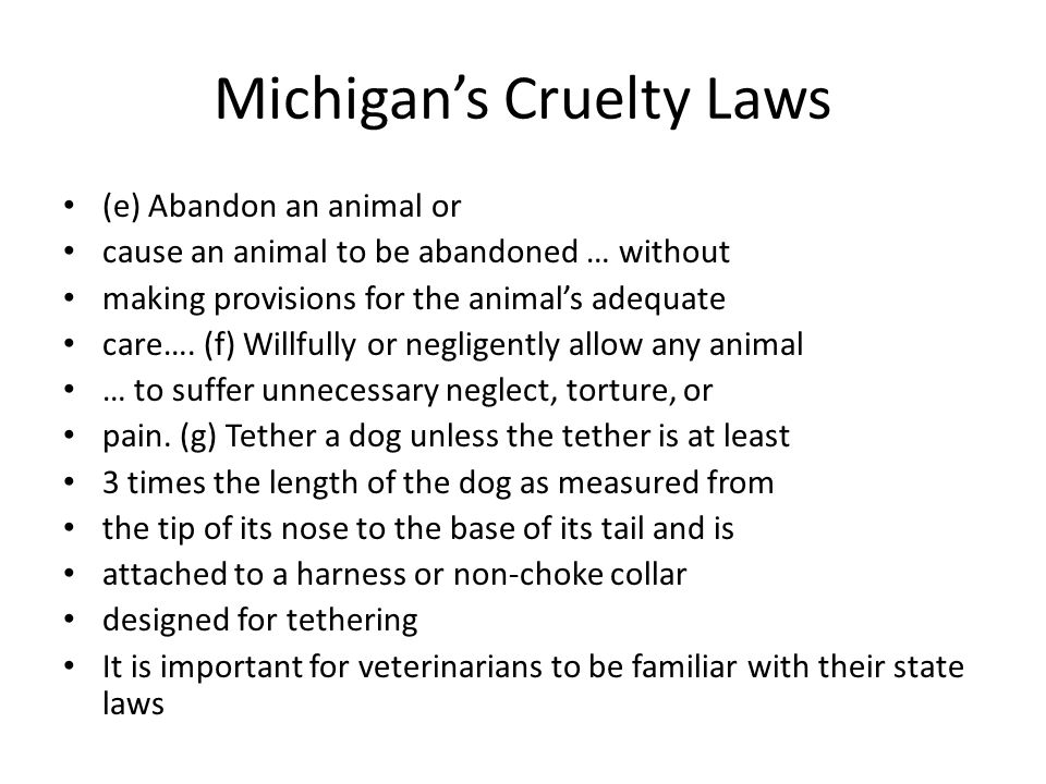 Michigan's Cruelty Laws (e) Abandon an animal or cause an animal to be abandoned … without making provisions for the animal's adequate care….