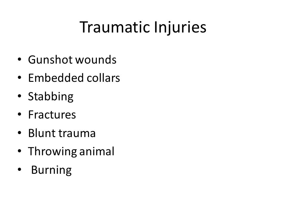 Traumatic Injuries Gunshot wounds Embedded collars Stabbing Fractures Blunt trauma Throwing animal Burning