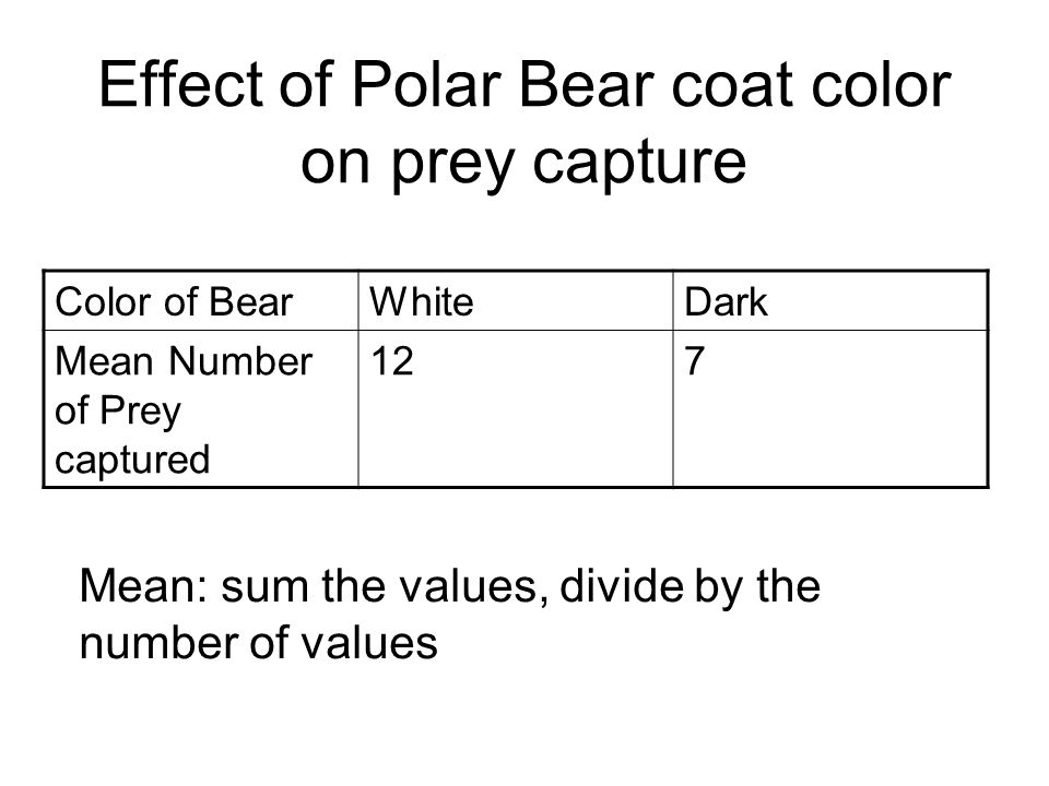 Effect of Polar Bear coat color on prey capture Color of BearWhiteDark Mean Number of Prey captured 127 Mean: sum the values, divide by the number of values