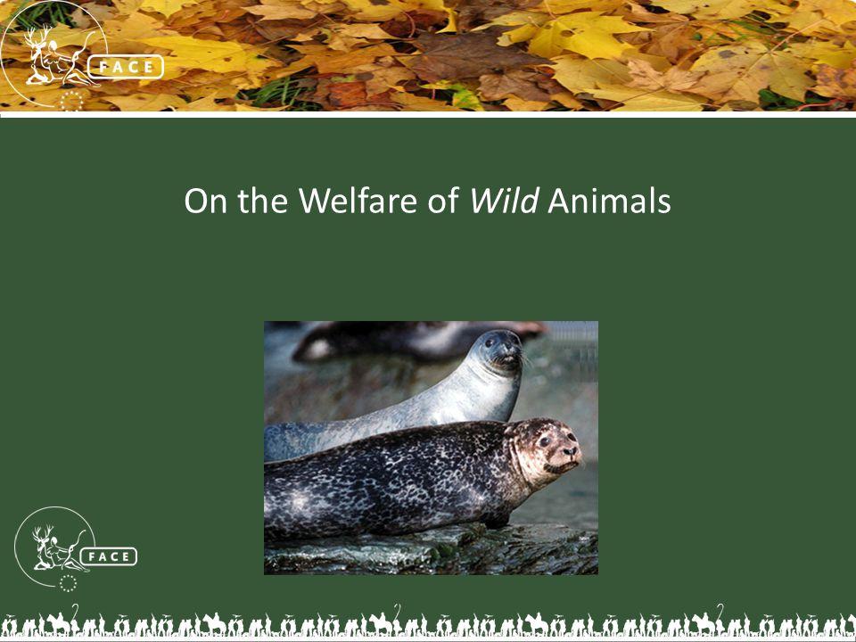On the Welfare of Wild Animals