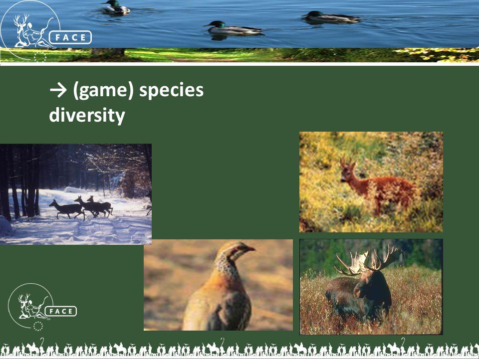 → (game) species diversity