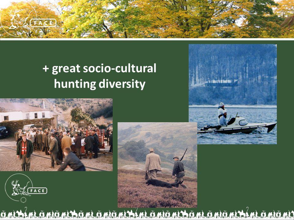 + great socio-cultural hunting diversity