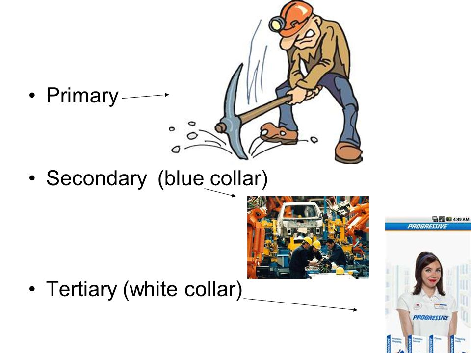 Primary Secondary (blue collar) Tertiary (white collar)