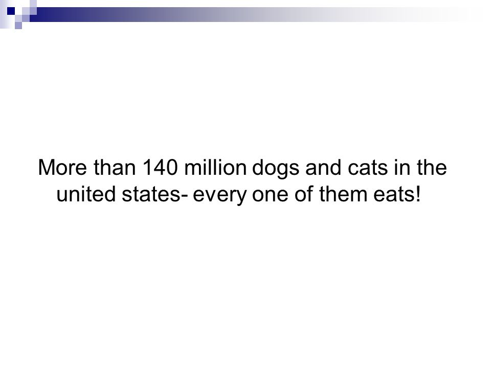 More than 140 million dogs and cats in the united states- every one of them eats!