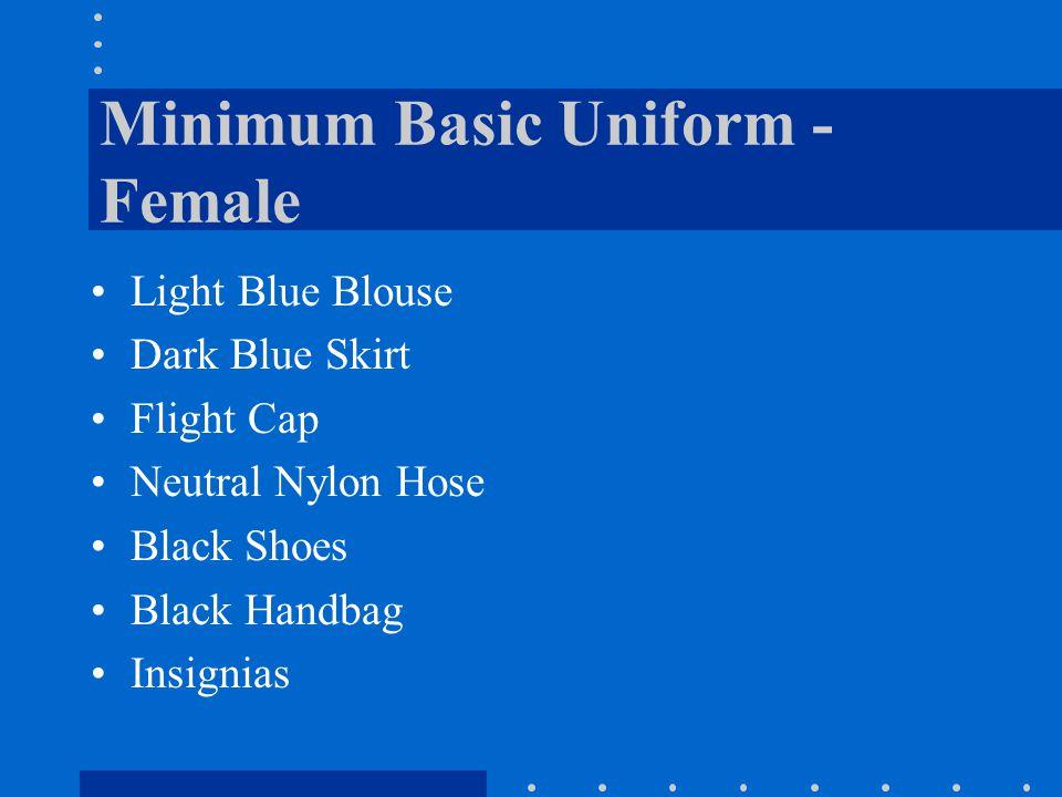 Minimum Basic Uniform - Female Light Blue Blouse Dark Blue Skirt Flight Cap Neutral Nylon Hose Black Shoes Black Handbag Insignias